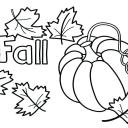 autumn-coloring-page-autumn-coloring-sheets-printable-pages-for-kindergarten-fall-pr-free-autumn-tree-coloring-pages